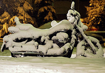 Зима цветотип фото